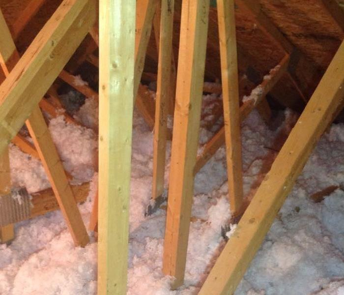 Insulation covers the attic's floor, messy and in disarray from animal interference.