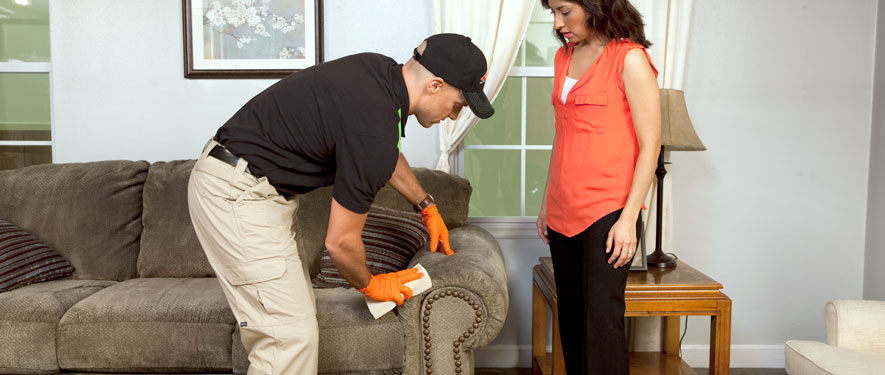 Beloit, WI carpet upholstery cleaning